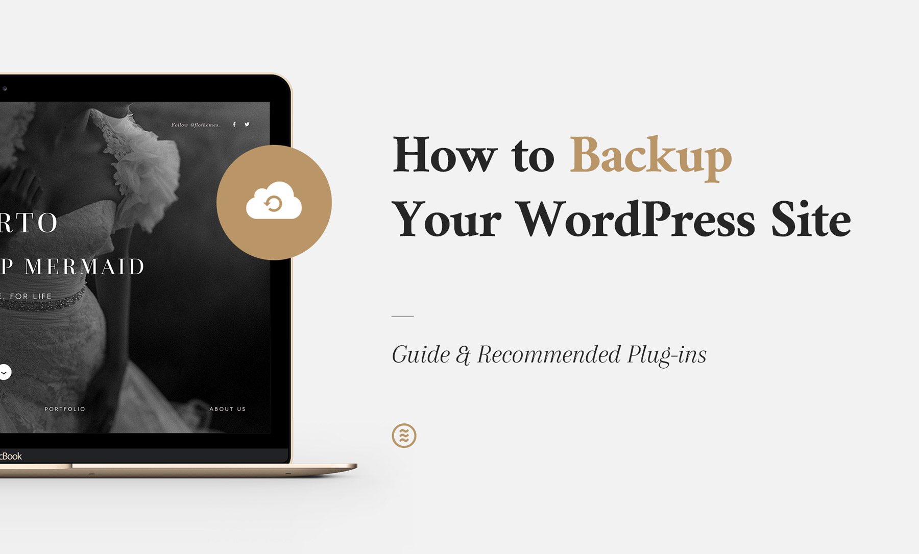 backup your site, manually, plugins, flothemes