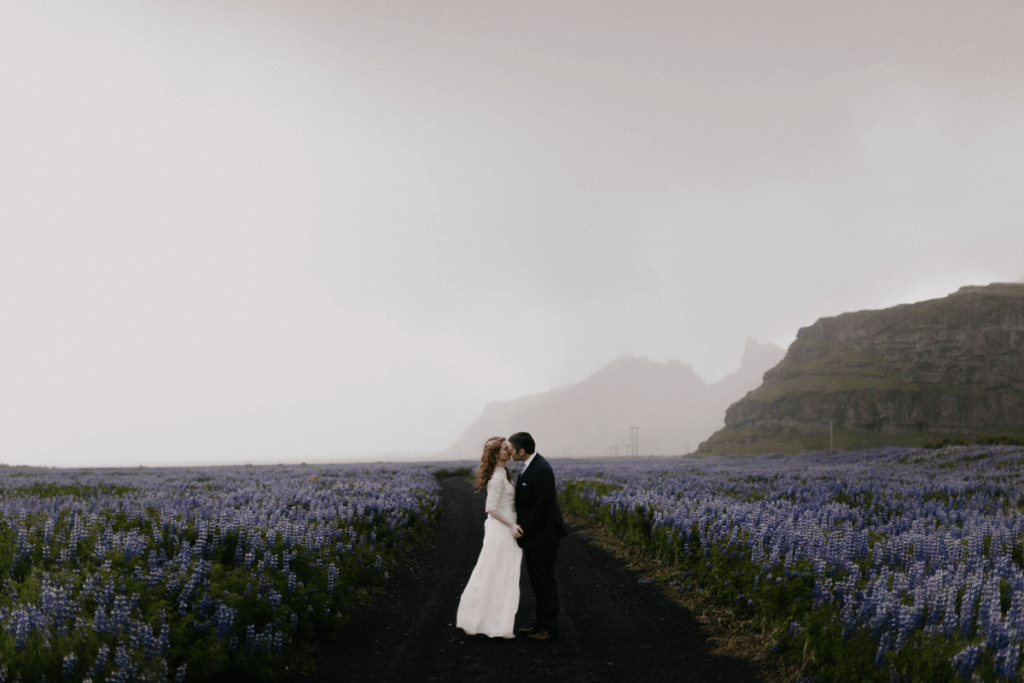 levi-tijerina-wedding-photography-interview-how to be a storyteller, wedding in iceland, violet field