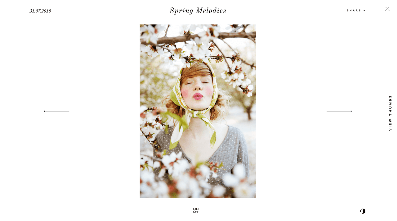 Narcisse website design for fashion, editorial and portrait photographers, quick look feature