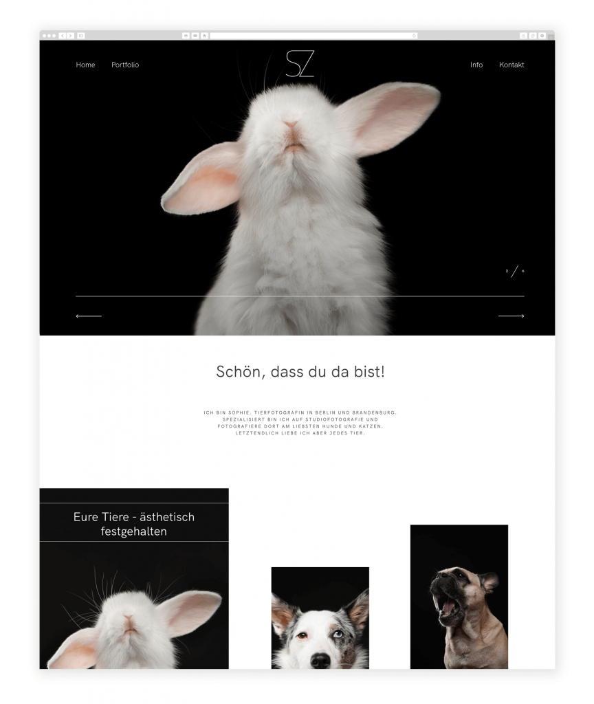 German Photographers websites, Animal and pets photography