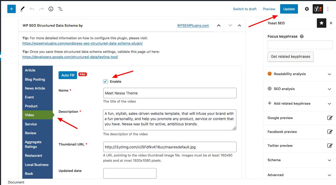 video schema setup plugin
