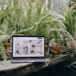 Beautiful Websites built with Pronto | What Clients who've upgraded say
